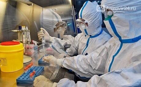 Статистика по коронавирусу стабильна: в крае 82 случая, фото-1