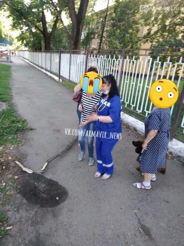 Жительница Армавира пострадала от падения ветки, фото-2