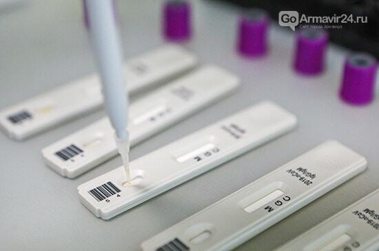Роспотребнадзор проверяет популяционный иммунитет к COVID-19 , фото-1