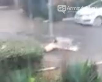 В Армавире осень напомнила о себе: ливень затопил улицы города, фото-1