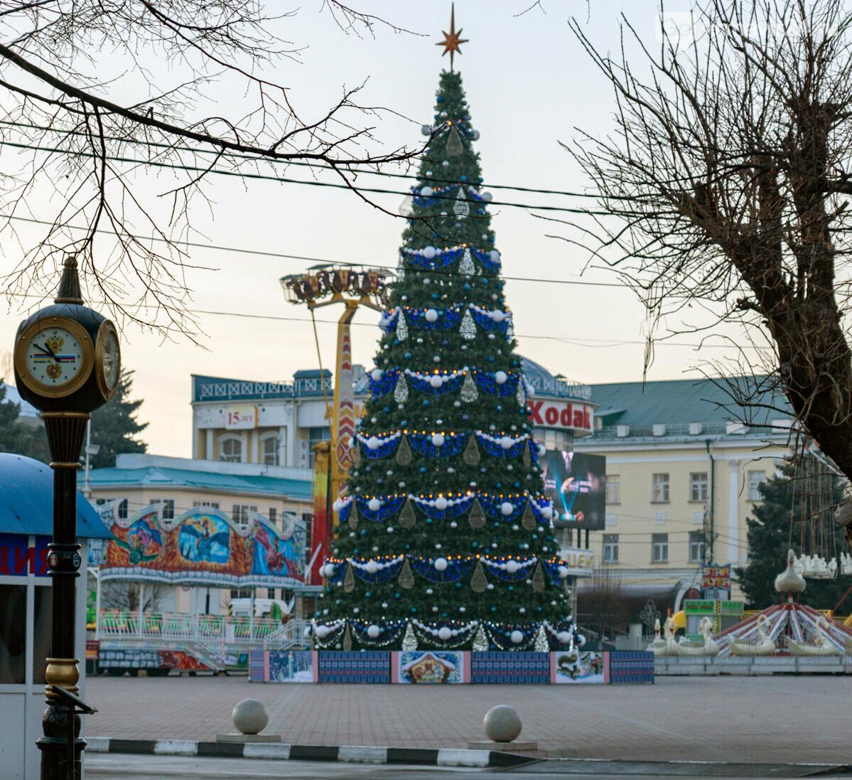 Новогодний флешмоб #ЕлкиКубани объединил сотни жителей, фото-1